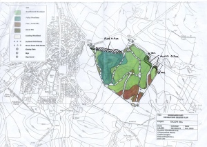 Coulter's Wood Plan